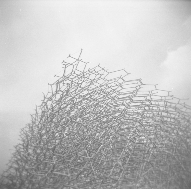 2017_03_05 Holga Ilford HP5 400_09