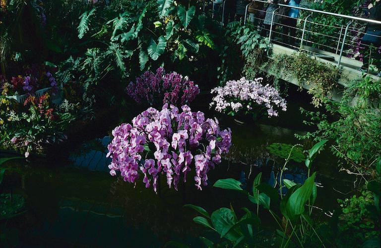 2017_03_13 Leica Kodak Ultramax 400_08
