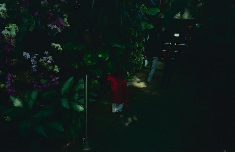 2017_03_13 Leica Kodak Ultramax 400_20