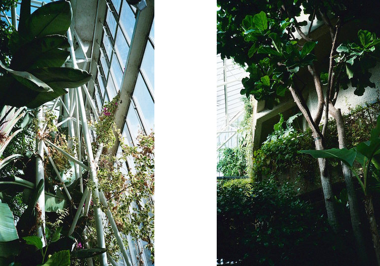 BarbConservatory_05