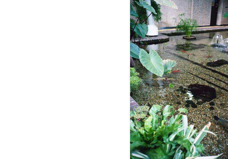 BarbConservatory_06
